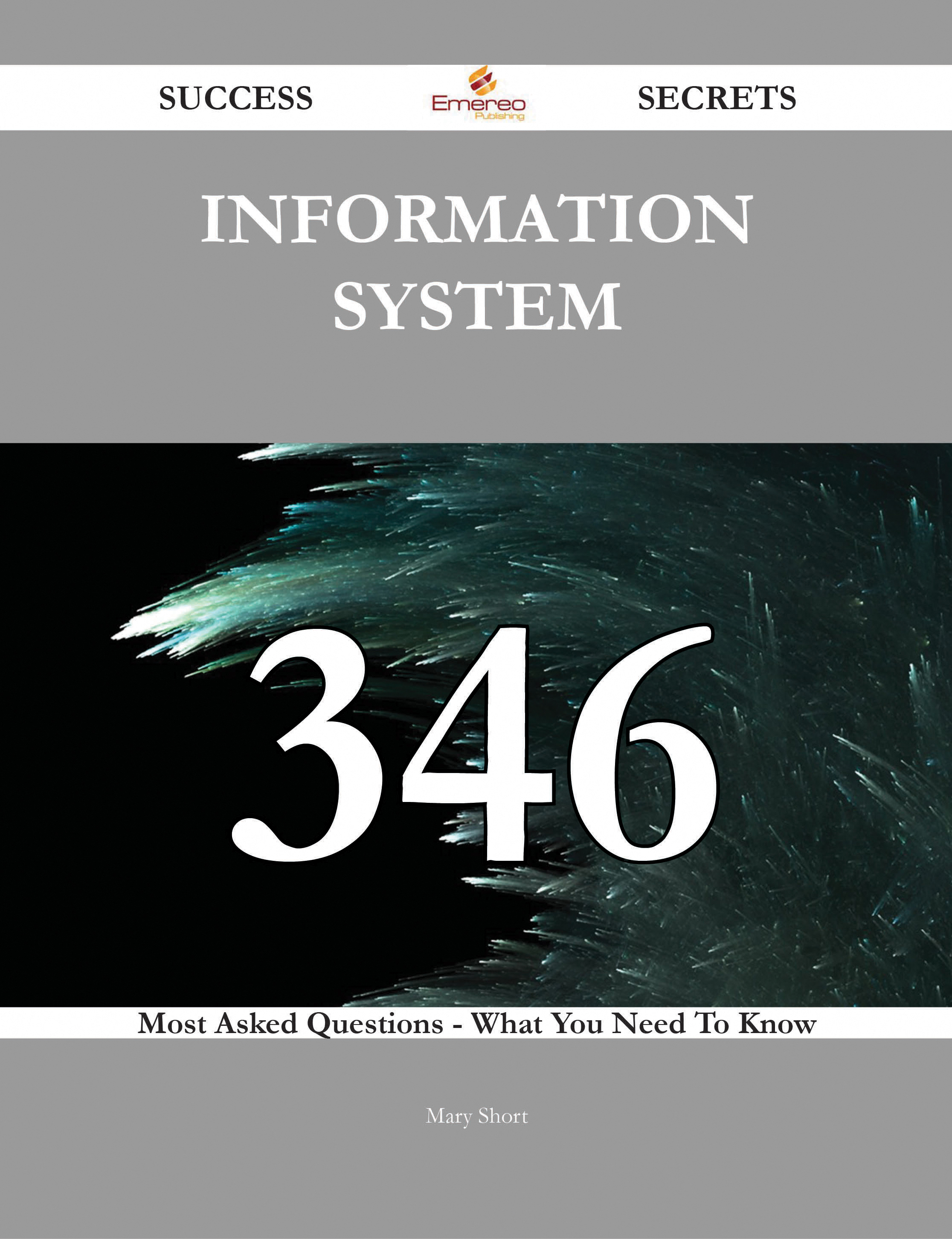 information system 346 Success Secrets - 346 Most Asked Questions On information system - What You Need To Know